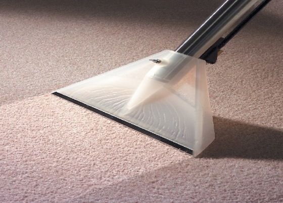 Carpet Cleaning Toowoomba Recommended Experts