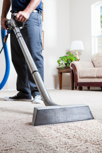 carpet cleaning newcastle