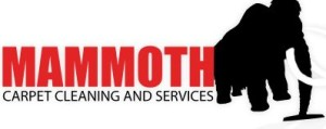mammoth carpet and cleaning services